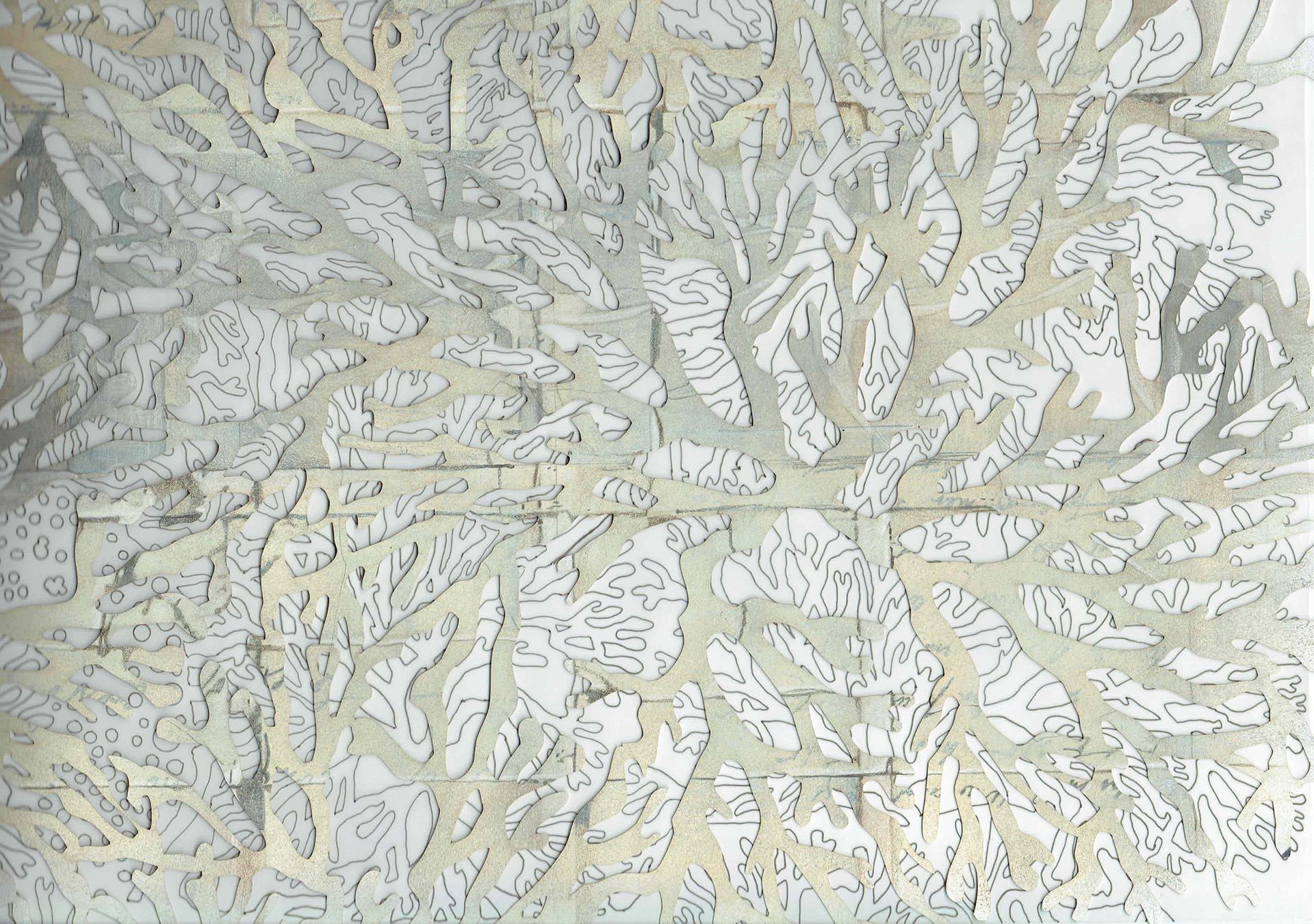 Emma Robertson - Seaweed Series